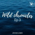 Wild Chronicles Ep3 cover