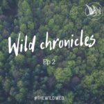 Words Wild Web couverture